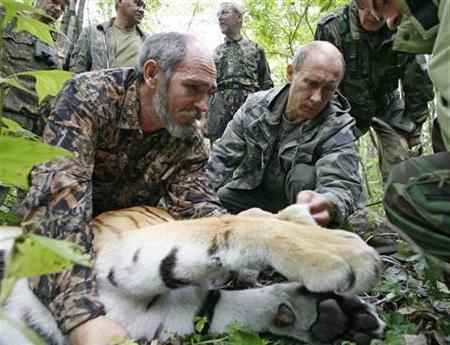 Проблемы браконьерства в России и пути решения