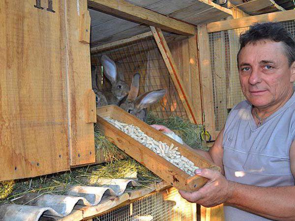 Комбикорм для кроликов своими руками: состав, способ приготовления