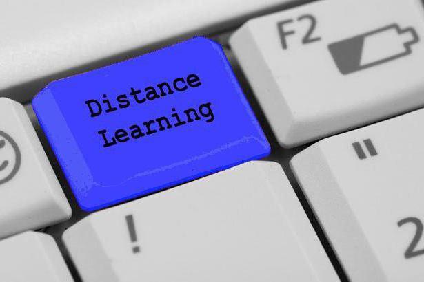 Заочное обучение после 9 класса: направления и особенности