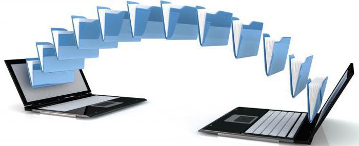 Внутренние документы организации: основные характеристики