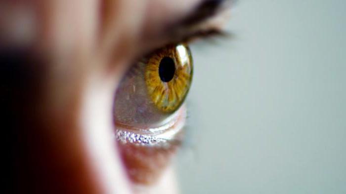 Обработка и использование биометрических данных. Персональные биометрические данные – это...