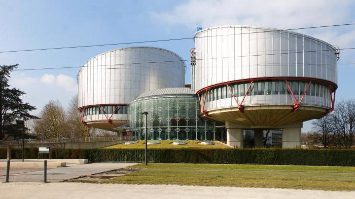 гаагский суд по правам человека