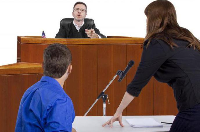 Принцип публичности в уголовном процессе: понятие, комментарии и особенности
