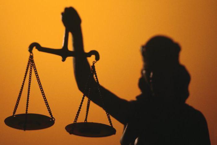 Функции уголовного процесса: понятие, виды и характеристики