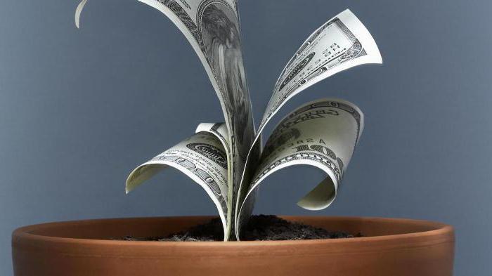 что нужно для приватизации?