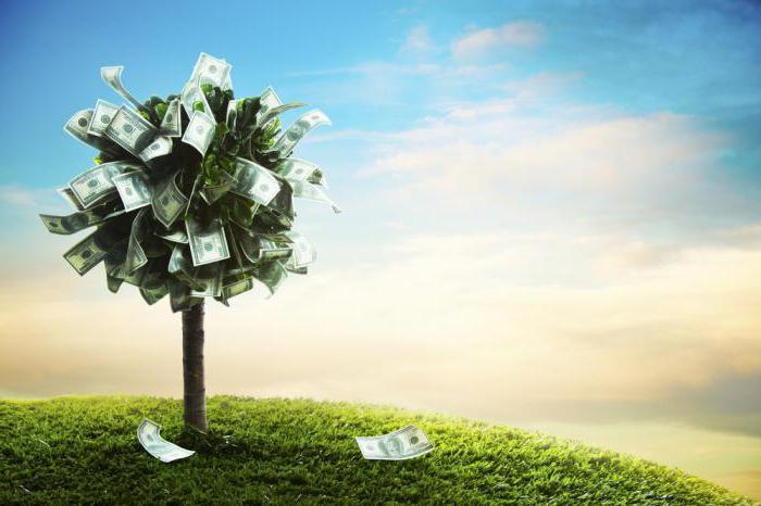 Формирование и управление портфелем ценных бумаг