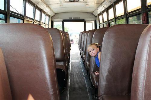 Основные правила перевозки детей в автобусе: список, особенности и рекомендации