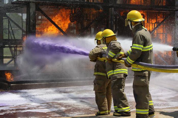 РТП: обязанности и особенности работы