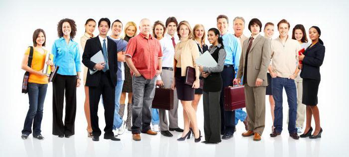 Должностные обязанности специалиста по кадрам: инструкция, права и требования