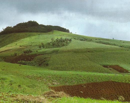 Отчуждение земель: понятие, юридические требования к сделке, специфика оформления