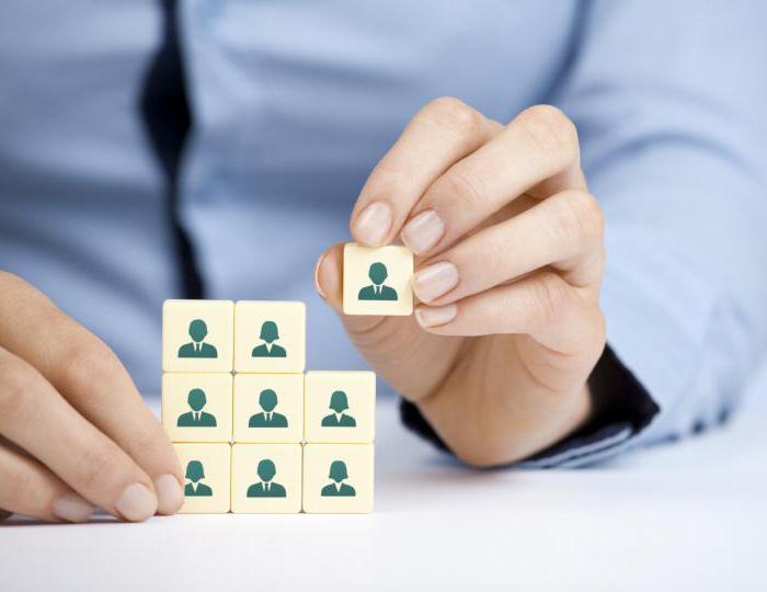 Должностная инструкция hr-менеджера: образец, бланк, шаблон.