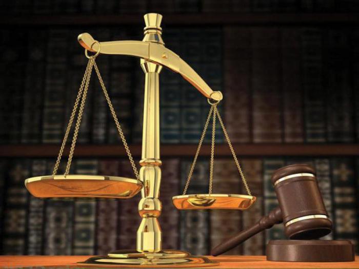 права и обязанности пристава исполнителя