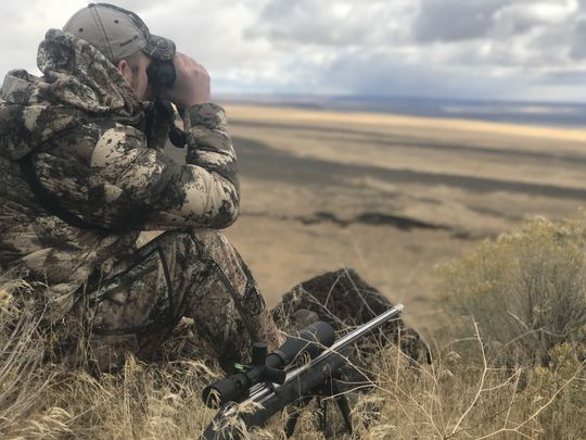 пневматика для охоты