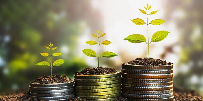 Кассовый метод учета доходов и расходов в бухгалтерии