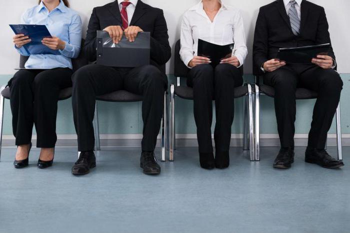 Квалификационные требования к госслужащим: описание, особенности, нормы и принципы