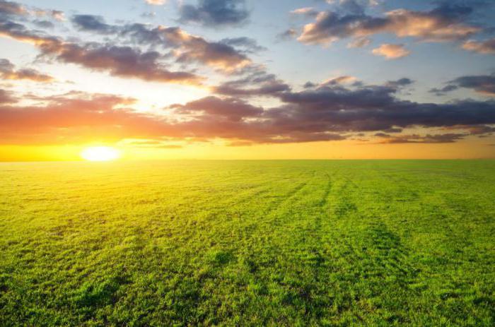 Пай земельный - земельный участок сельхозназначения