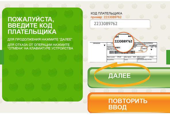 Как узнать код плательщика ЖКХ по адресу: особенности и пошаговое описание