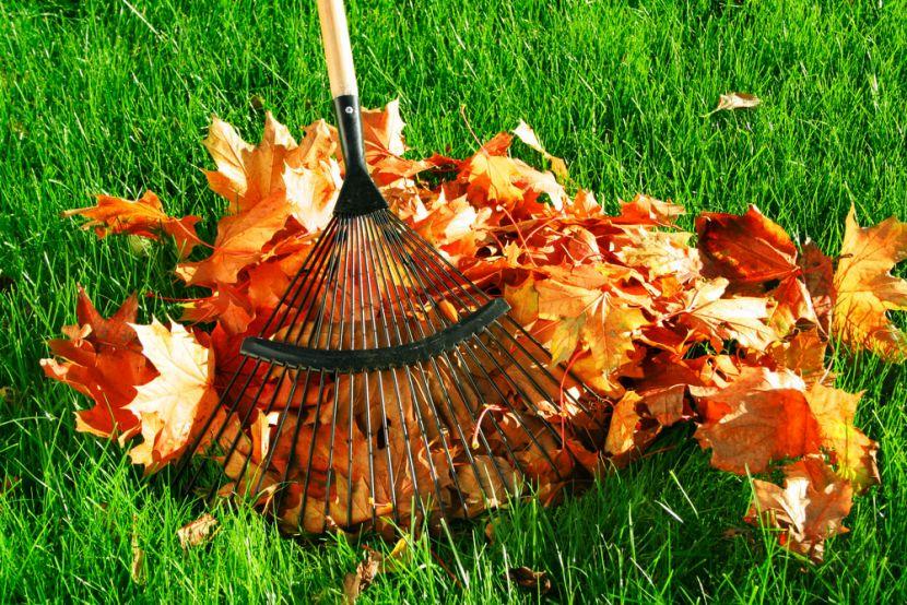 уборка дворовых территорий