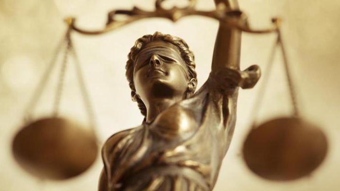 Конституционное судопроизводство: понятие, принципы, особенности