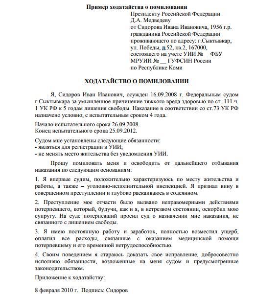 Кто осуществляет помилование в РФ - особенности, требования и права