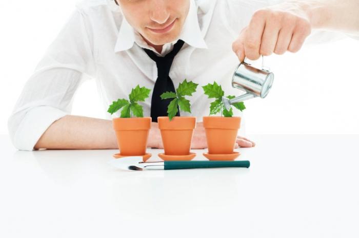 финансирование инвестиций в основной капитал