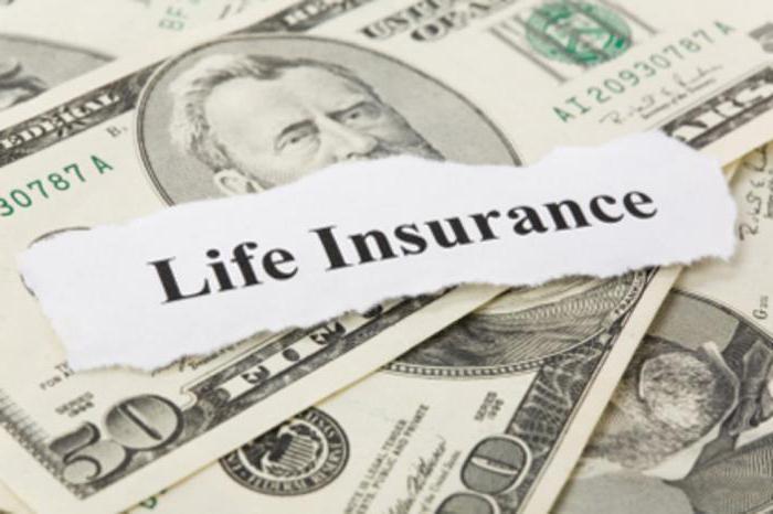 страхование жизни на случай смерти срок
