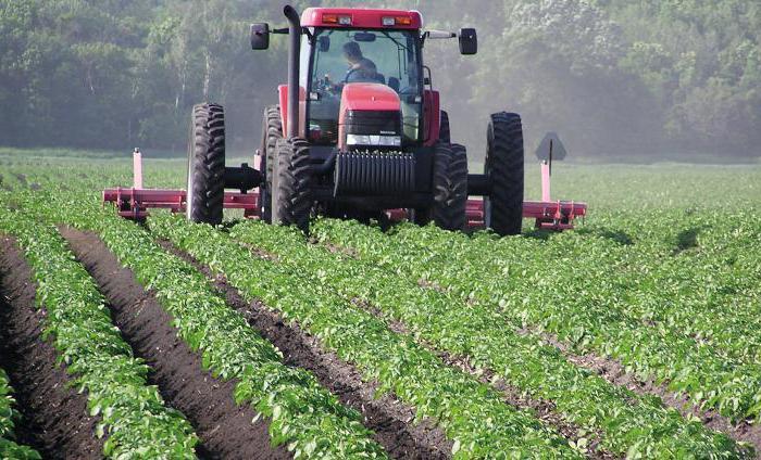 госпрограмма развития сельского хозяйства