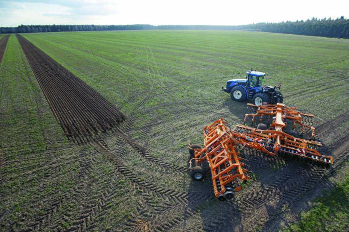 как получить грант на развитие сельского хозяйства