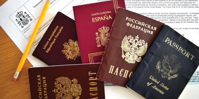 Эссе на тему двойное гражданство плюсы и минусы 7996