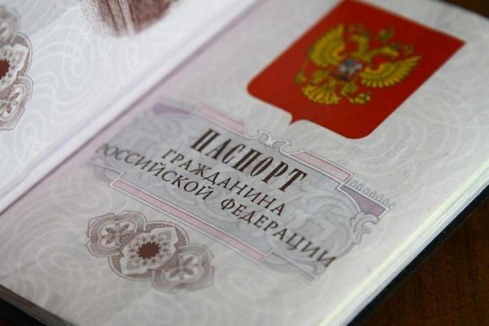 Эссе на тему двойное гражданство плюсы и минусы 4551