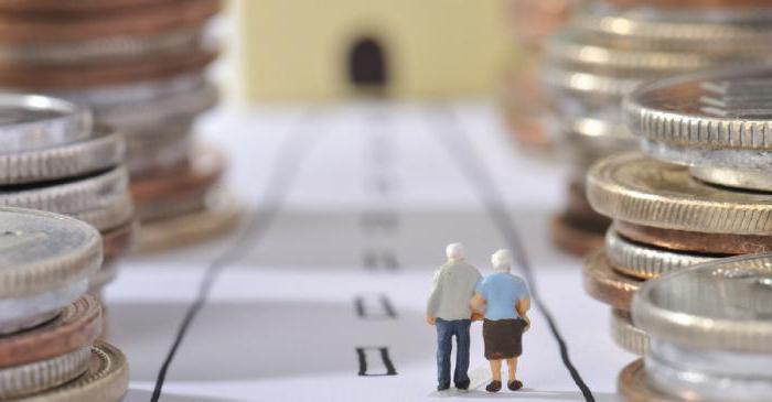 Единая государственная система социального обеспечения: общее понятие