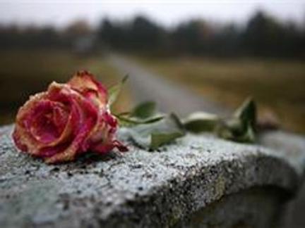 как ухаживать за могилой зимой