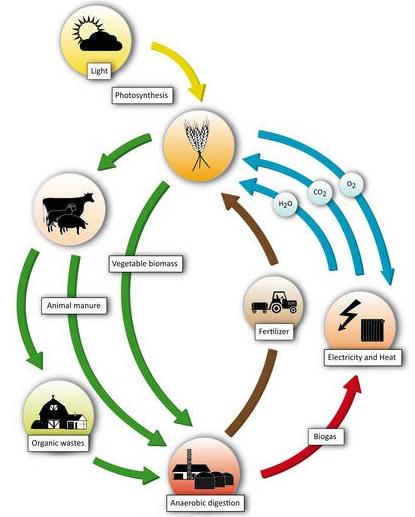 Изображение - Оборудование для производства биогаза 3866