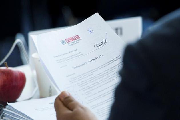Инвестиционная декларация: образец заполнения