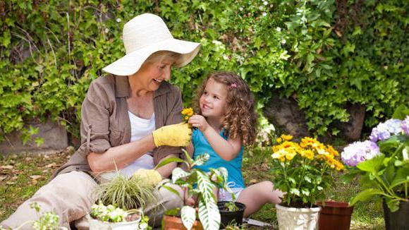 Бизнес для пенсионеров на дому: лучшие идеи и советы по реализации