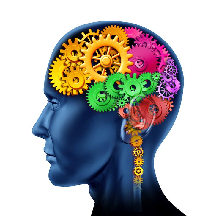 Интеллектуальная деятельность - это что?