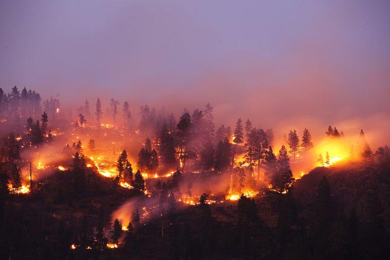 Что такое стихийное бедствие? Классификация и ликвидация последствий
