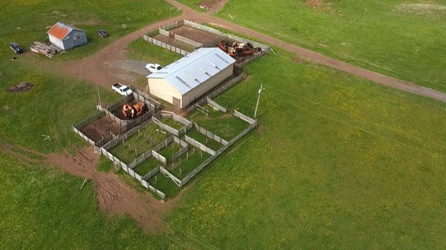 Как продать земельный пай: пошаговая инструкция