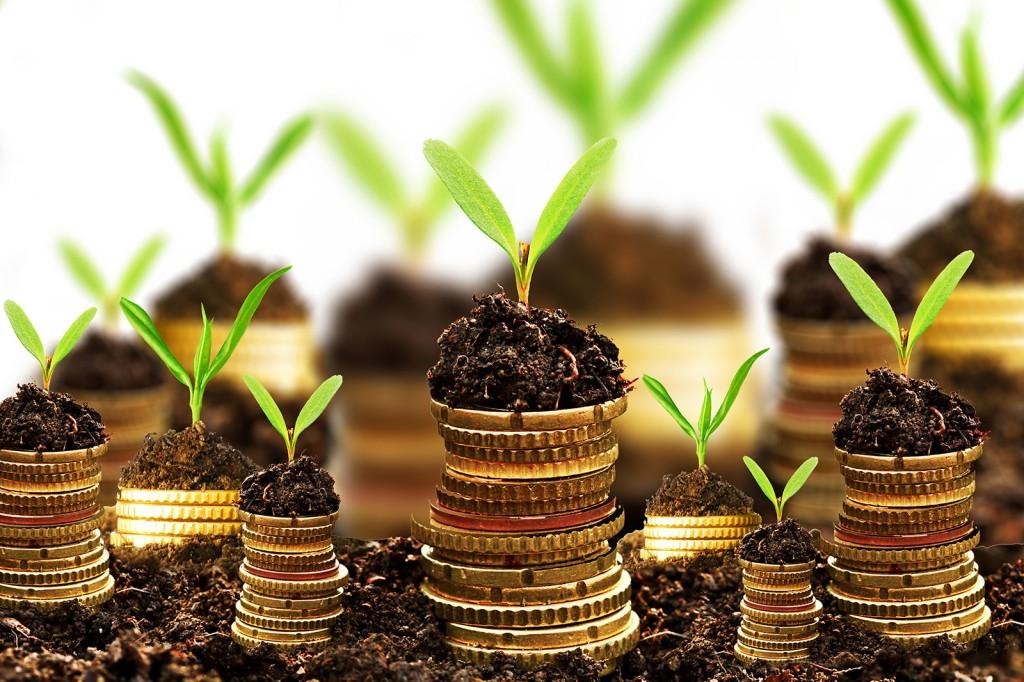 5. раздел капитал и резервы бухгалтерского баланса