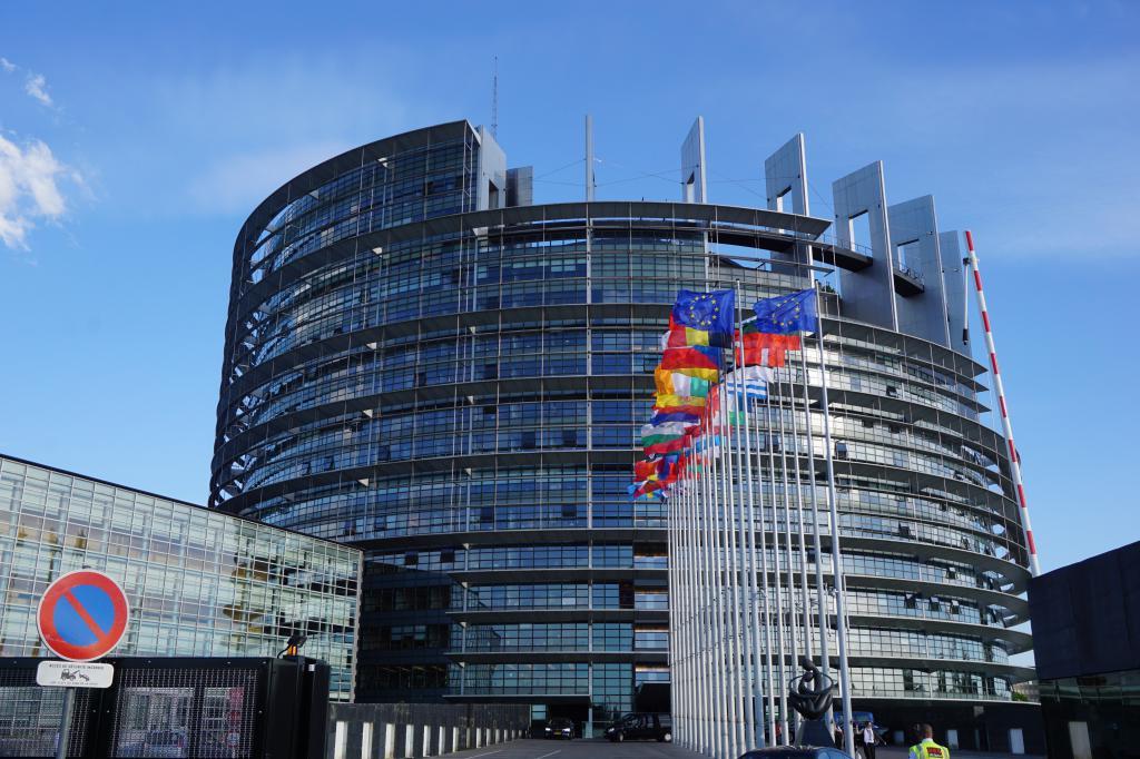 Для чего организована Европейская экономическая зона