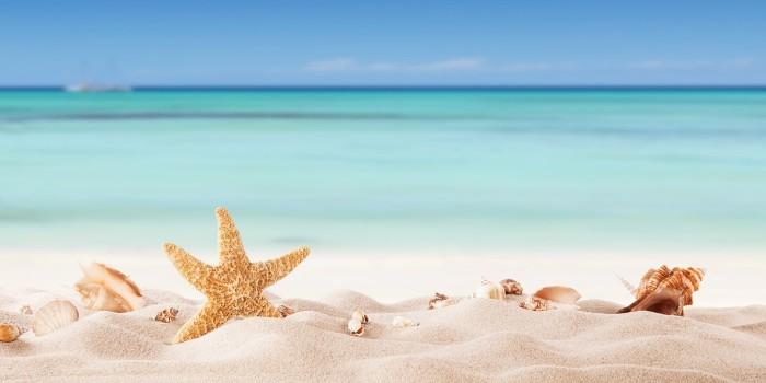 Выгоден ли отпуск в январе